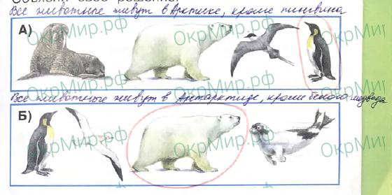 Рабочая тетрадь (Плешаков) 2 часть - 3. Где и когда?. Где живут белые медведи?, ответ 1