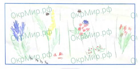Рабочая тетрадь (Плешаков) 2 часть - 4. Почему и зачем?. Почему мы не будем рвать цветы и ловить бабочек?, ответ 8