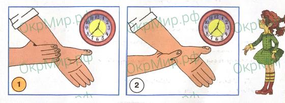 Рабочая тетрадь (Плешаков) 1 часть - 3. Мы и наше здоровье. Дыхание и кровообращение, ответ 6