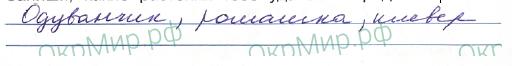 Научный дневник (Плешаков) - . Наблюдения в природе летом, ответ 1