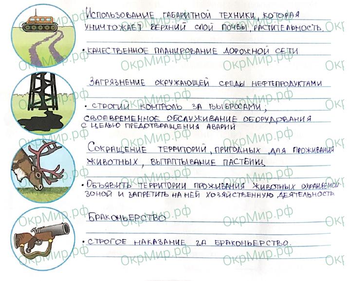 Рабочая тетрадь (Плешаков, Крючкова) 1 часть - 2. Природа России. Тундра, ответ 6