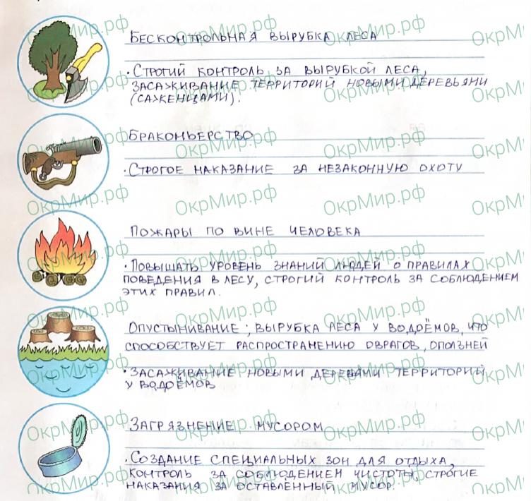 Рабочая тетрадь (Плешаков, Крючкова) 1 часть - 2. Природа России. Лес и человек, ответ 3