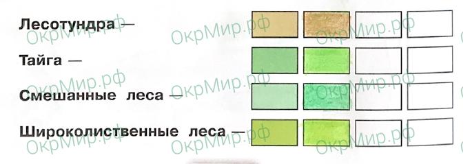 Рабочая тетрадь (Плешаков, Крючкова) 1 часть - 2. Природа России. Леса России, ответ 1