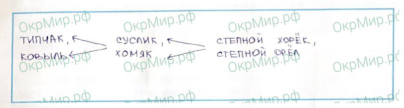 Рабочая тетрадь (Плешаков, Крючкова) 1 часть - 2. Природа России. Зона степей, ответ 5