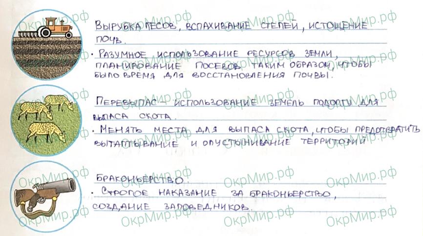Рабочая тетрадь (Плешаков, Крючкова) 1 часть - 2. Природа России. Зона степей, ответ 6