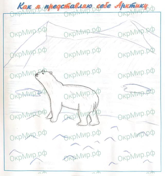 Рабочая тетрадь (Плешаков, Крючкова) 1 часть - 2. Природа России. Зона арктических пустынь, ответ 6